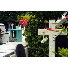 mexican cemetary 1, isla mujeres I 2002 I 16 x 20 inches I edition: 5